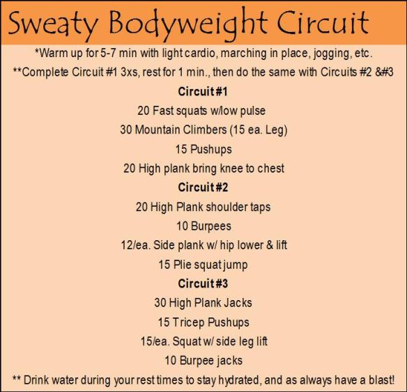 Bodyweight Workout 1.bmp